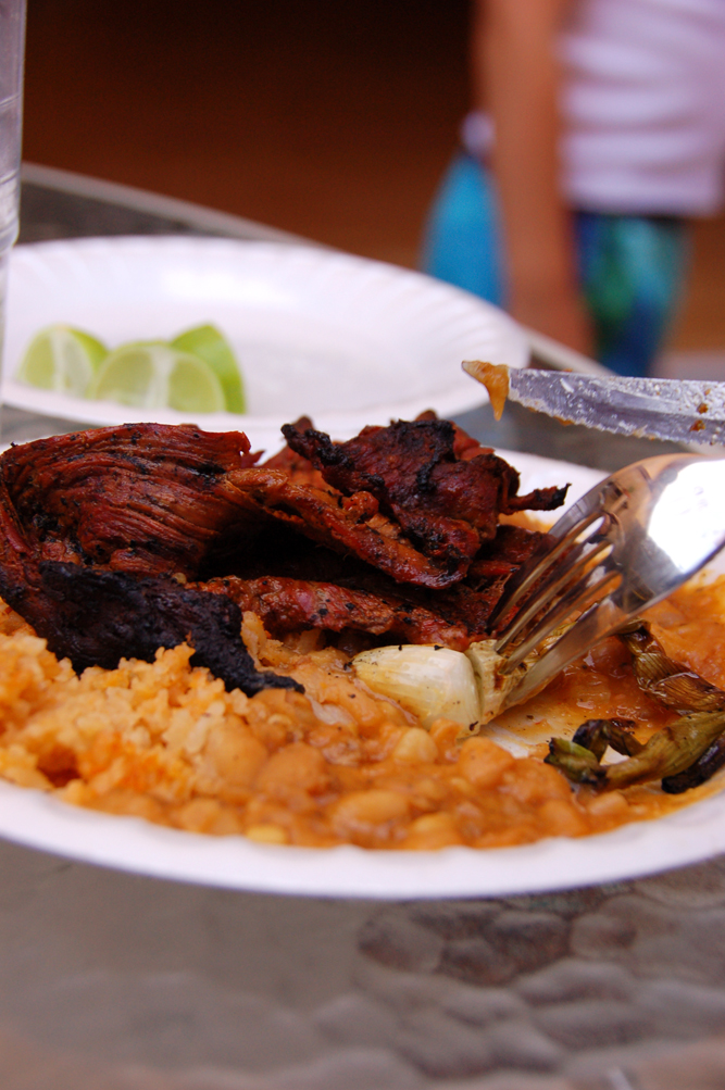 fired up the grill and cooked up carne asada and pollo. It was such ...